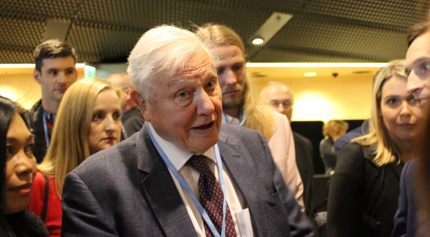 In class with David Attenborough: active participation in the time of social media